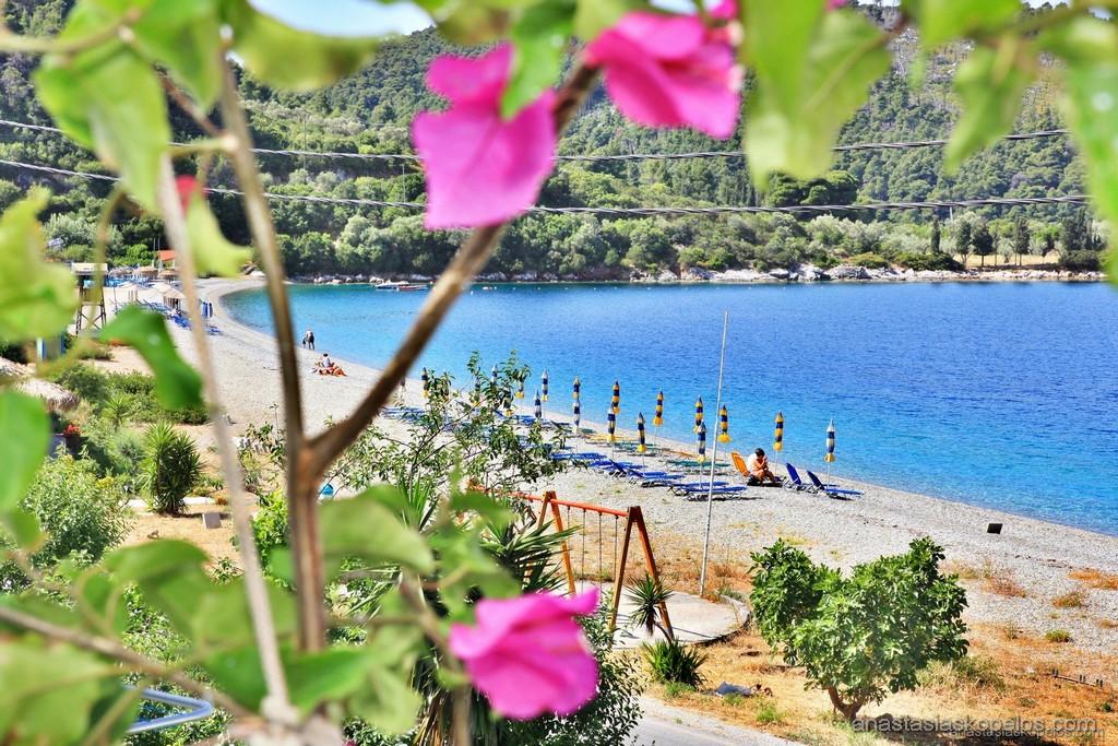 http://anastasiaskopelos.com/wp-content/uploads/2015/03/Skopelos-enoikiazomena-domatia-panormos-8.jpg